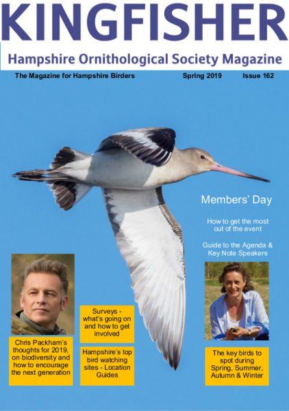 Kingfisher 162